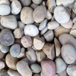Grey River Pebble (30mm size)